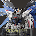 Freedom Gundam C.E.73 by Yoshify