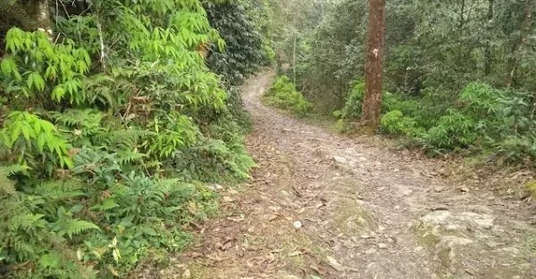 Path that leads to Ramitey View Point