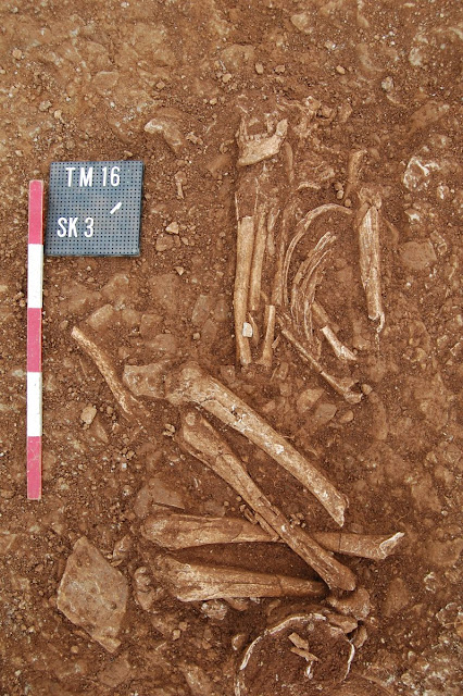 Stone Age 'cult' henge site and human remains discovered near Stratford, England
