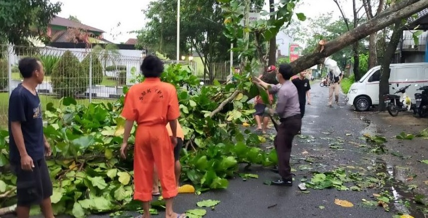 Hujan Deras Disertai Angin Kencang di Purbalingga, Polisi Bantu Evakuasi Pohon Tumbang
