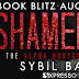 Book Blitz & Giveaway - Shameless by Sybil Bartel
