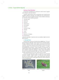 9. Sınıf Biyoloji Ders Kitabı Cevapları Netbil Yayınları Sayfa 18
