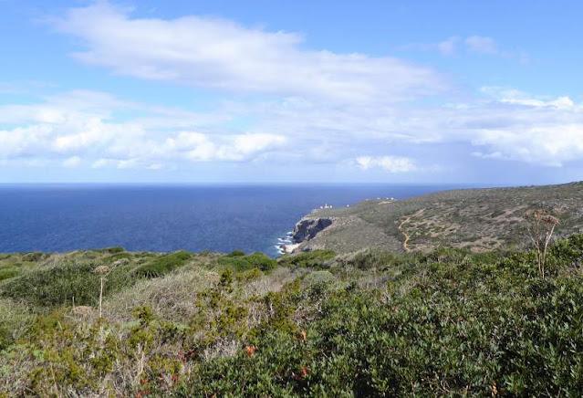 panorama verso Capo Grosso