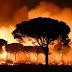 Μεγάλη δασική πυρκαγιά στην Ισπανία – Εκκενώνονται σπίτια και ξενοδοχεία