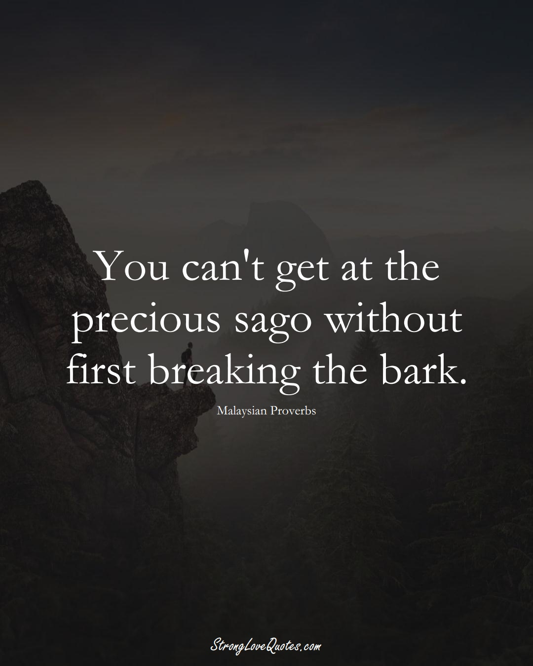 You can't get at the precious sago without first breaking the bark. (Malaysian Sayings);  #AsianSayings