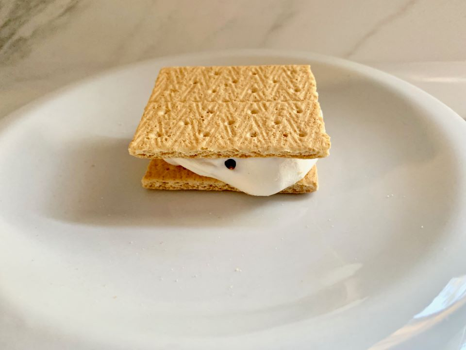 Enjoy a S'mores Indoors #ad