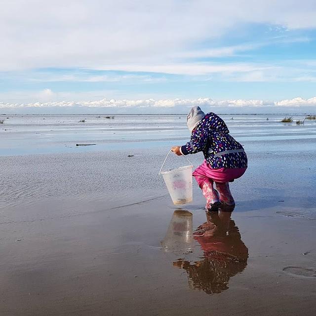 Das Fanø-Gefühl: Urlaub auf einer besonderen dänischen Nordsee-Insel. Die Insel Fanö vor Dänemarks Küste & unser toller Aufenthalt in den Herbstferien