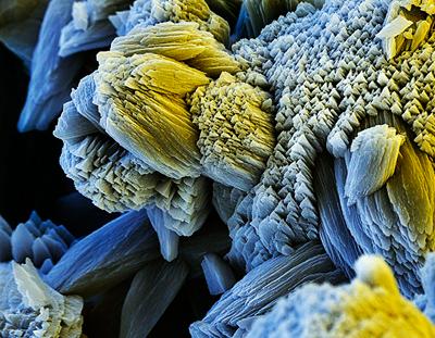 накипь под микроскопом