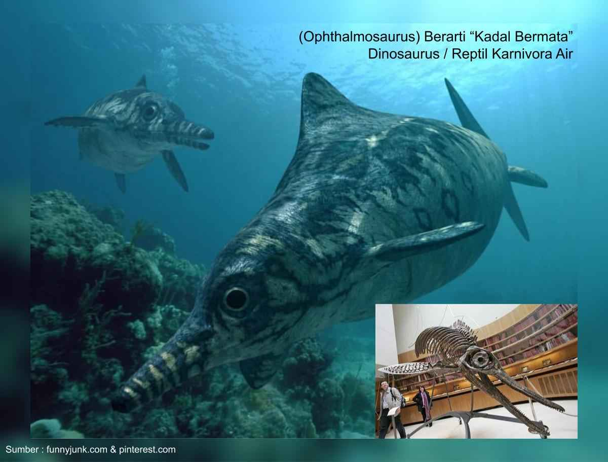 ophthalmosaurus, dinosaurus karnivora air