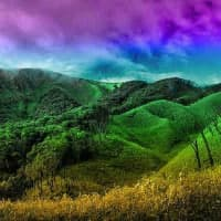 Wow Moss Mountain Valley Escape