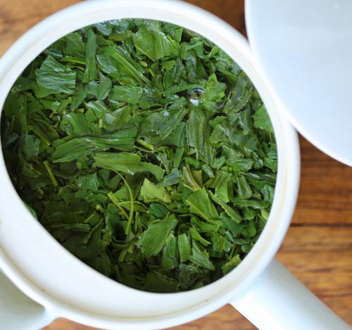 一杯の緑茶。何よりホッとする必須のアイテム