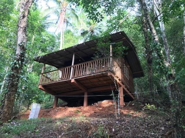 Polwaththa Wood Cabanas