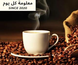 تناول القهوة المفرط .. يؤدى إلى زيادة دهون البطن والخصر