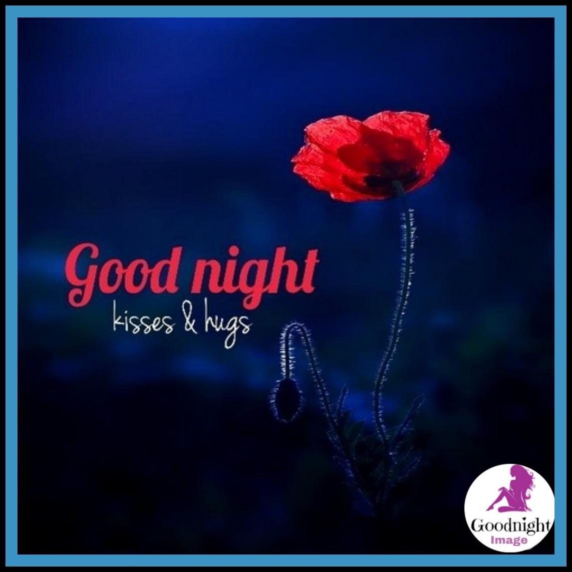 Good Night%2BImage 12