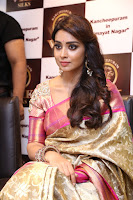 Actress Shriya Saran Stills in Saree at VRK Silks Launches at Himayat Nagar  0001.JPG