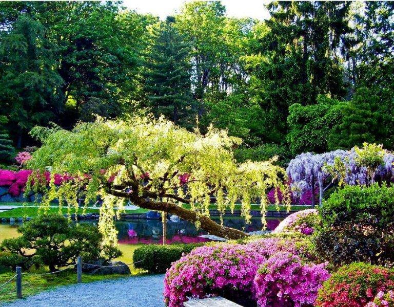 Bread for Brain: Beautiful Gardens