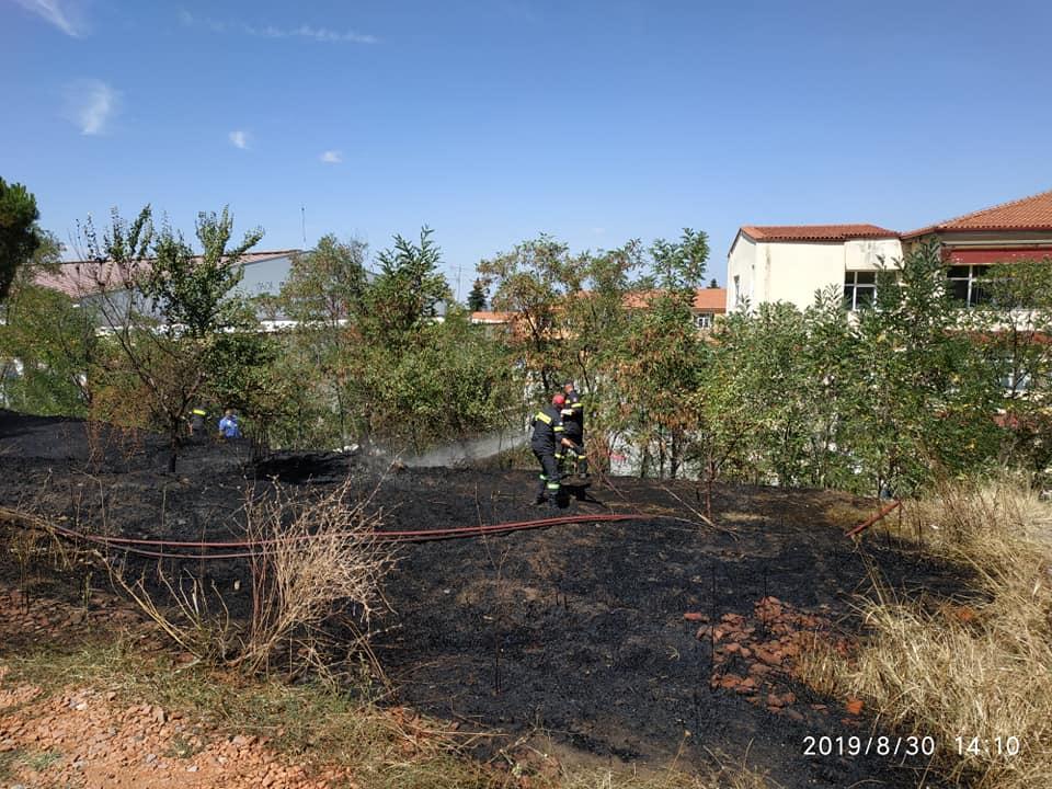 """Κατασβέστηκε άμεσα η φωτιά στα """"Βουναλάκια"""" του Γενικού Λυκείου Αρναίας."""