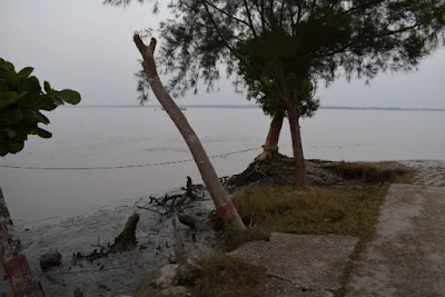 River view from Karamjol in the Sundarbans