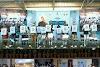 मुख्यमंत्री गहलोत ने आयुष्मान भारत महात्मा गांधी राजस्थान स्वास्थ्य बीमा योजना के नए फेज का किया लोकार्पण