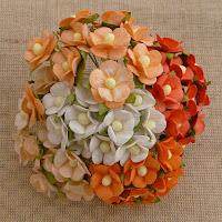 https://www.essy-floresy.pl/pl/p/Kwiatki-Sweetheart-Blossom-mix-bialo-pomaranczowy/943