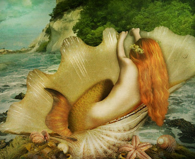 mermaid floating in a beautiful seashell