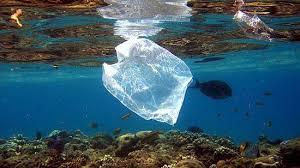 معلومات حول النفايات البحرية