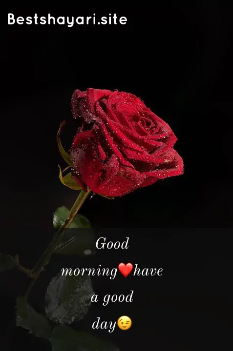 Inspirational good morning images with quotes/bestshayari.site/2021