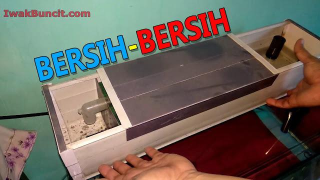 Bagaimana Cara Membersihkan Box Filter Talang Air yang Benar pada Aquarium Ikan Mas Koki?
