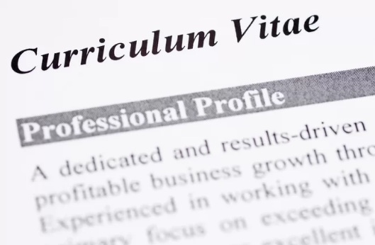 Write a Curriculum Vitae (CV) for a Job