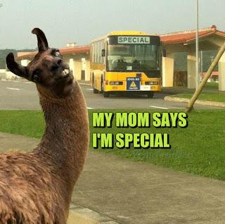 my-mom-says-i-amp-039-m-special_o_1509501.jpg