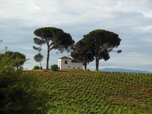 Villafranca del Bierzo, Vega de Valcazare, Pieros, Camino