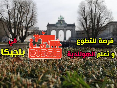 فرصة للتطوع وتعلم اللغة الهولندية مع منظمة Diggie vzw في  بلجيكا لمدة عام ( ممولة)