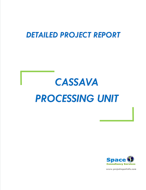 Project Report on Cassava Processing Unit
