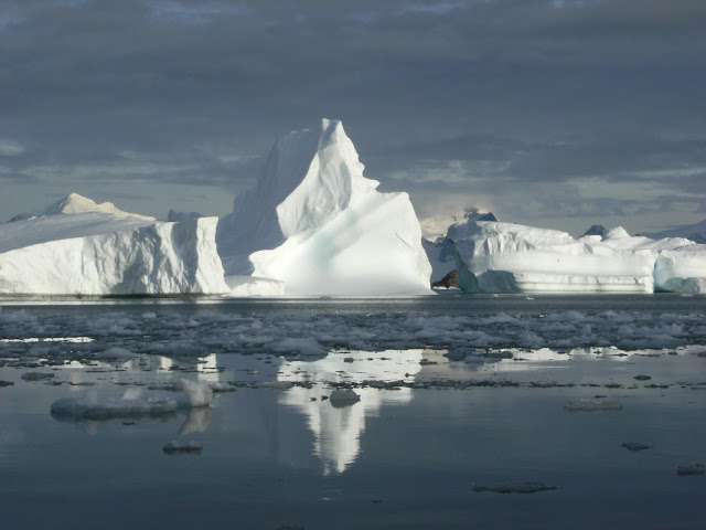Ocean warming primary cause of Antarctic Peninsula glacier retreat