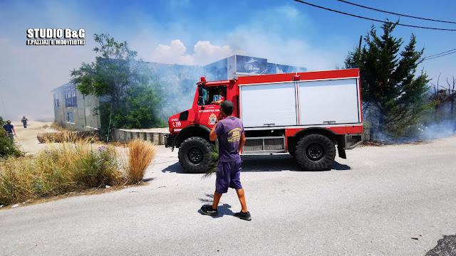 Αργολίδα: Πυρκαγιά στην παραλιακή Ναυπλίου Νέας Κίου