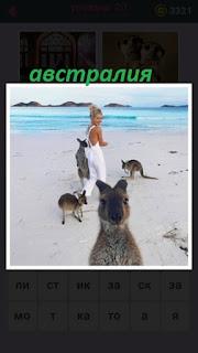 женщина на берегу вместе с кенгуру в Австралии