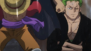 ワンピースアニメ ワノ国編   ロロノア・ゾロ   ONE PIECE   Hello Anime !