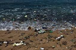 5 Macam Bentuk Pencemaran Laut Yang Wajib Kamu Ketahui
