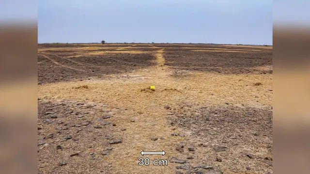 Geoglyphs in India. (Photo: Asian Archaeological Research Institute)