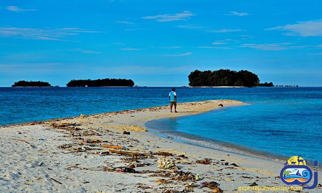 pulau gosong di wisata pulau harapan