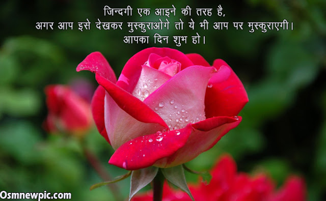 Love Good Morning Quotes