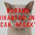 BARANG DIHANTAR JNT PECAH, ROSAK??!