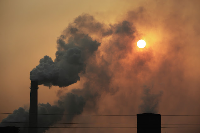 Alzheimer's Biomarkers Found in Brains of Children Exposed to Air Pollution