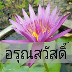 beautiful is flowers