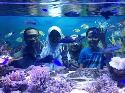 cara pesan tiket pesawat murah di pegipgi wisata indonesia keluarga ke batu secret zoo dan eco green park jatim malang nurul sufitri mom lifestyle blogger