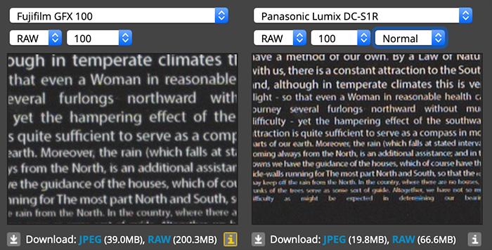Детализация Fujifilm GFX 100 и Panasonic Lumix S1R
