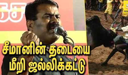 Seeman and Ameer held Jallikattu in Madurai