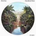 Bola Sete, Samba music, artpreneure-20