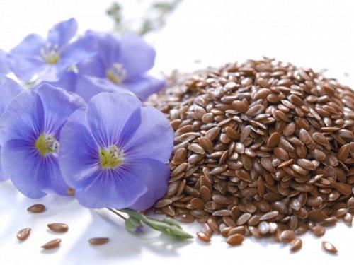 L'eau de graines de lin pour lutter contre la cellulite