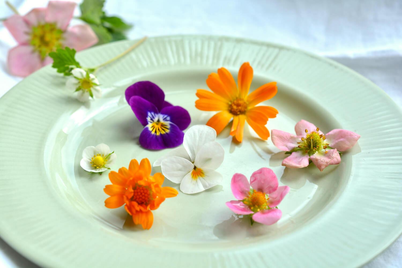 syötäviä-kukkia